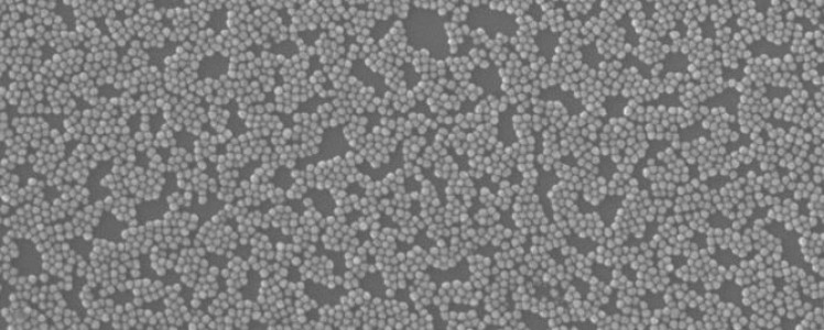 NEW LAUNCH: Silver nanoparticles